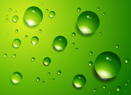 lime: Water drops on green background