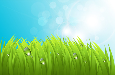 realistic grass with dew, and blue sky, fresh spring background Vector