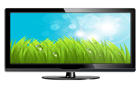 lcd plasma tv with fresh grass on screen