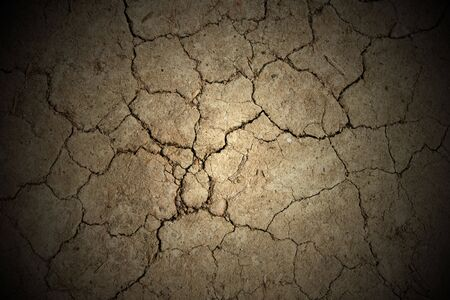 abstract background - cracked earth texture photo