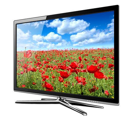 lcd display: Modern TV lcd, led with wild poppy flowers on screen