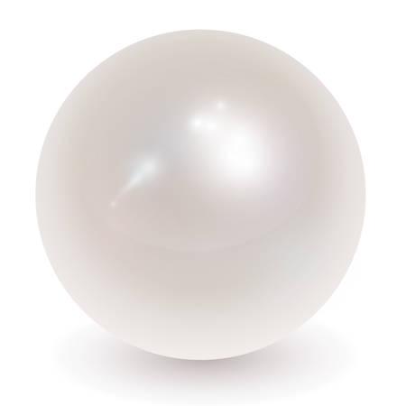 Beautiful pearl realistic  illustration.