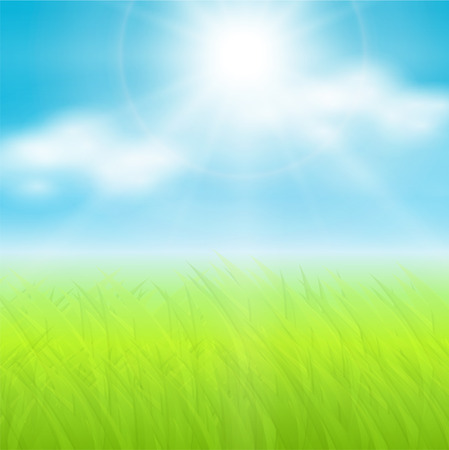 sky background:   background, sunny spring sky and green meadow. Illustration