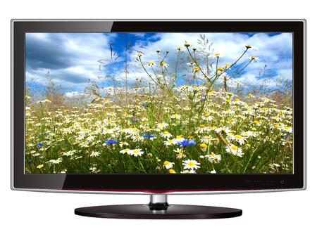 TV flat screen lcd, plasma met wilde bloemen op scherm.