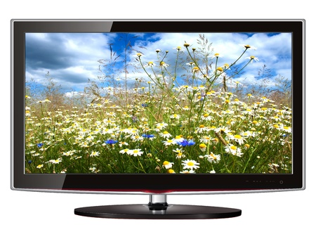 television screen: TV flat screen lcd, plasma with wild flowers on screen. Stock Photo