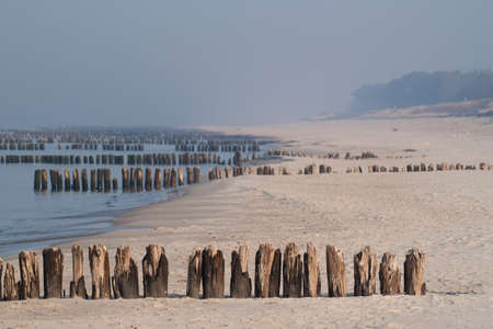 Baltic coast with wooden breakwaters in foggy day. photo