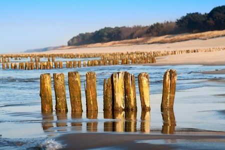 breakwaters: Baltic coast with wooden breakwaters Stock Photo