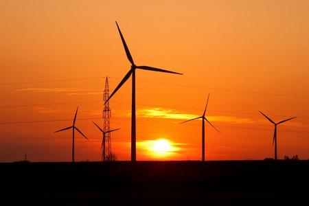 Wind turbine farm over sunset photo