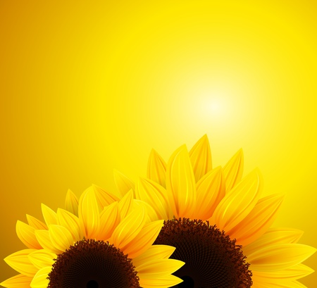 Abstract background with sunflowers. Vector