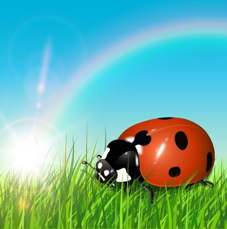 Primavera de fondo con la mariquita, el sol y el arco iris, vector.