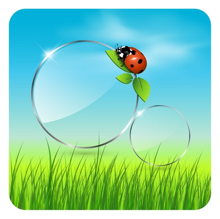 Background spring or summer, with vector clouds, ladybug and grass. Vector