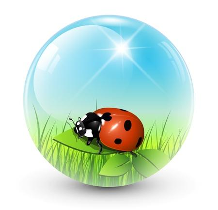 mariquitas: Esfera con la bola de resorte dentro de vector, brillante.