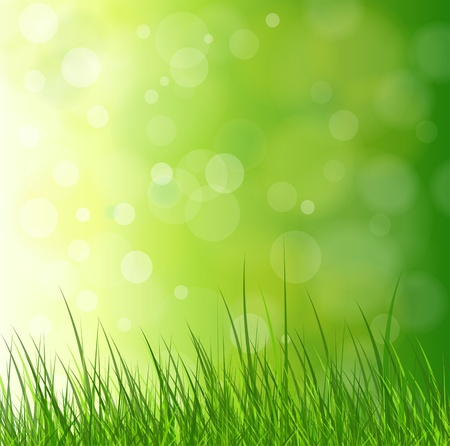 Natural green background with grass. Vector