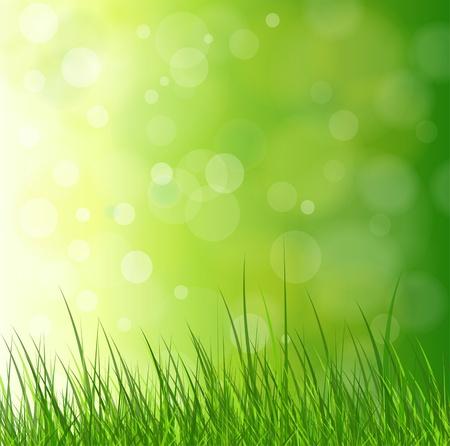 prato e cielo: Naturale sfondo verde con erba. Vettoriali