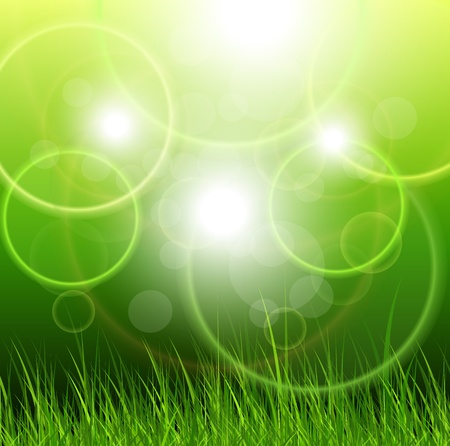 Natural green background with vector grass. Stock Vector - 13142764