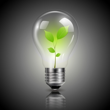 Light bulb with green sprout inside, vector. Vector