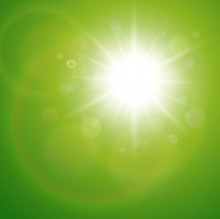 Green natural  background with summer sun, vector.  Vector