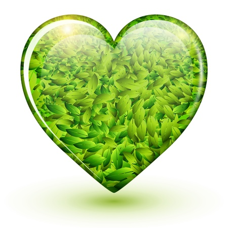 passion ecology: Green heart icon with leaves inside, vector illustration Illustration