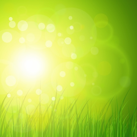 spring background: Natural green, sunny background.