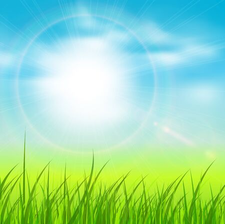 spring background: Spring natural sunny background with sun and grass.