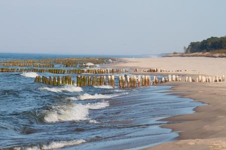 breakwaters: Baltic coast with wooden breakwaters Stock Photo