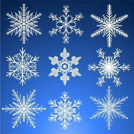 Decorative vector Snowflakes set. Stock Vector - 21716922