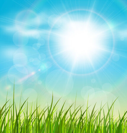 good nature: Spring natural sunny background with vector sun and grass. Illustration