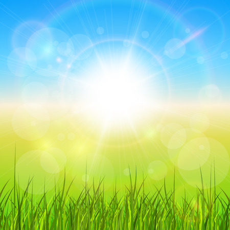 lens flare: Sunny natural background with vector sun and grass.