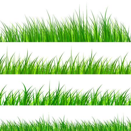 Groen gras monsters geïsoleerd, vector illustratie.