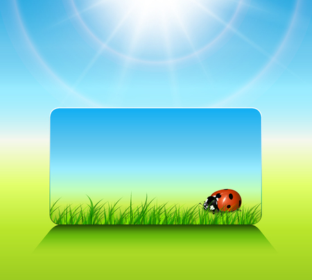Sunny background spring or summer, vector illustration. Vector