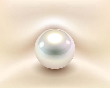 Background with white pearl, vector illustration.