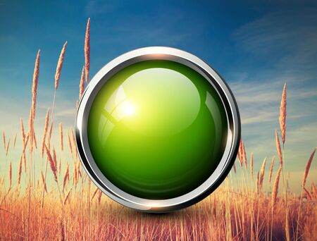 web design background: Green shiny button over natural grass background Stock Photo