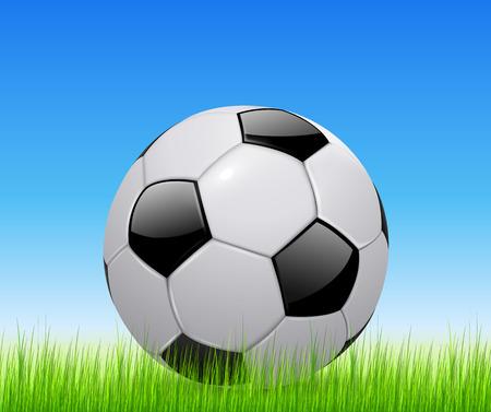 grass field: Soccer ball on green grass field Illustration