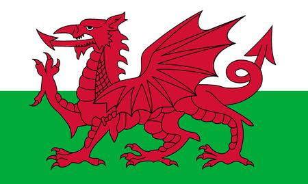 bata blanca: bandera de País de Gales, dragón rojo en el blanco y verde Vectores