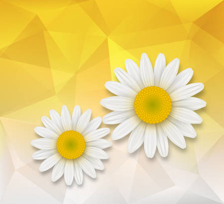 chamomile: Abstract background with chamomile flowers over triangle pattern composition. Illustration