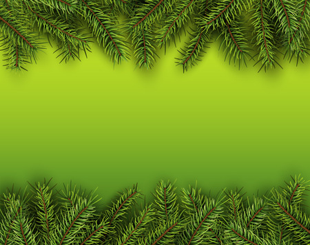 fir tree: Christmas background with green fir tree, vector illustration.