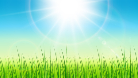 Green background with sun and grass, vector spring background