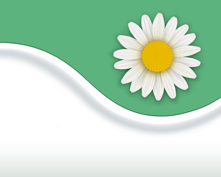 Green Background with white spring flower, vector illustration