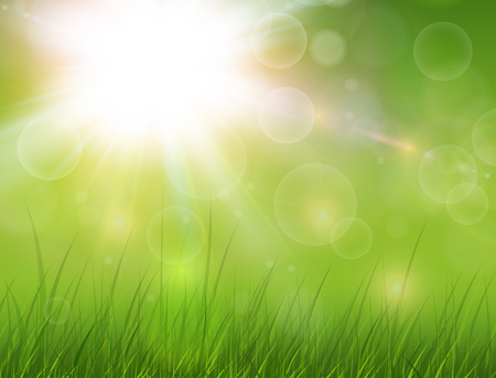 Green nature background, sunny with grass as spring vector background. Çizim