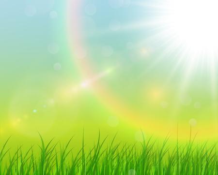 Sunny natural background, summer sunny green vector illustration.