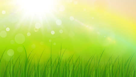Sunny natural background, summer sun with green grass and blurry bokeh as fresh green spring background, nature vector illustration.