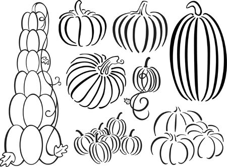 fall harvest: Black and White Pumpkin Design Set