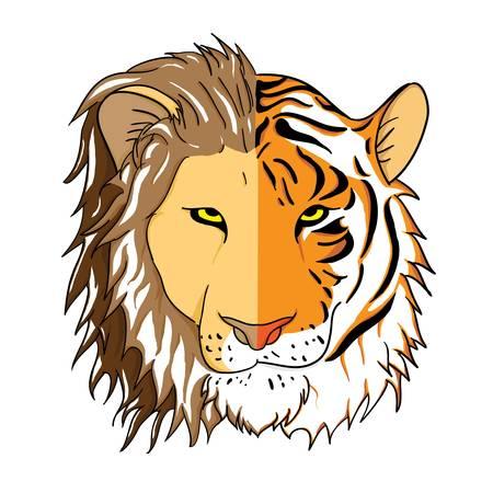 lion drawing: Volti uniti di un leone e una tigre Vettoriali