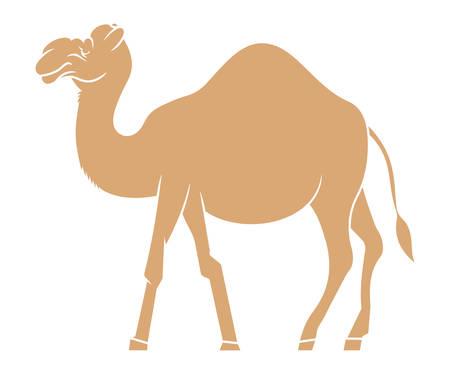 hump: Illustrazione di vettore del cammello