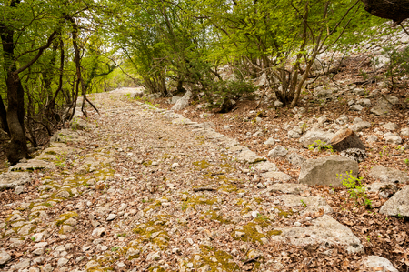 Ancient road dating back to the roman empire near Beli, island of Cres (Croatia)