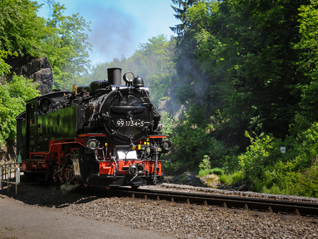 Train with a steam engine going through a forest on a sunny day