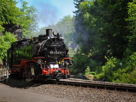 Zug mit einer Dampfmaschine, die einen Wald an einem sonnigen Tag durchläuft Standard-Bild - 87817466