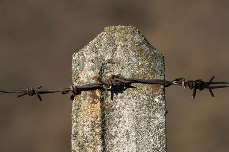 Closeup of an old rusty barbed wire on a concrete post Stock Photo