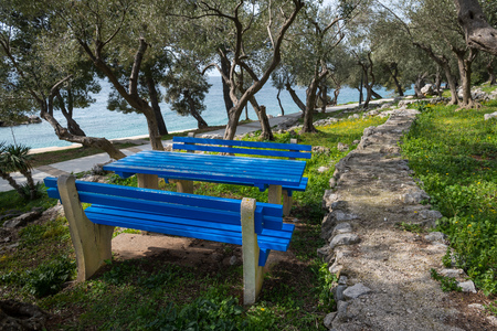 Blue table and benches in an olive grove near the sea, Croatia 스톡 콘텐츠