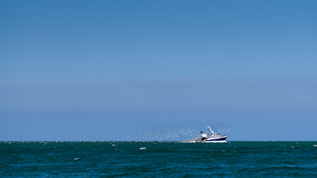 Fisher boat with a group of sea gulls near Etretat (Normandy France) on a sunny day in summer